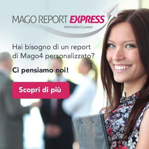 Mago Report Express